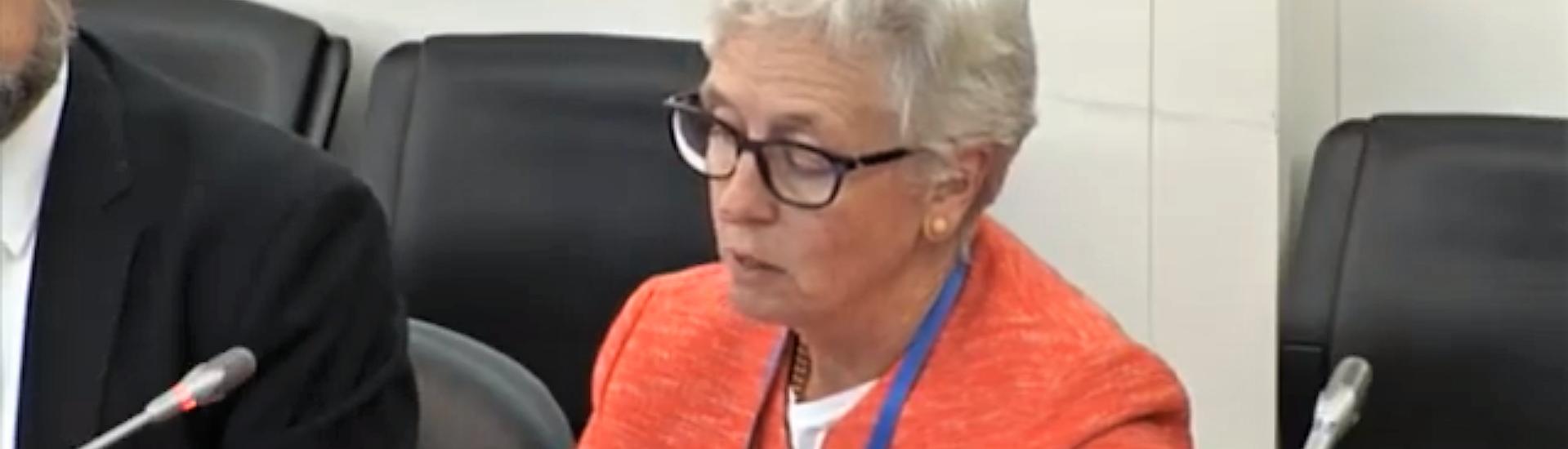 Comunicado de Imprensa – Presidente Região Europeia da Confederação  Mundial de Fisioterapia ouvida no Parlamento