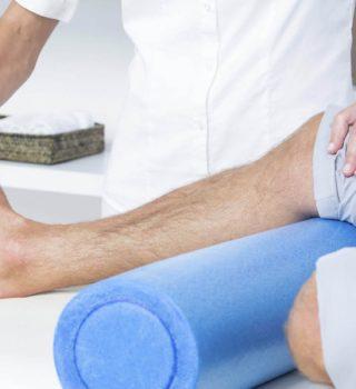Proposta de Organização dos Serviços de Fisioterapia no Âmbito de Cuidados de Reabilitação no Serviço Nacional de Saúde